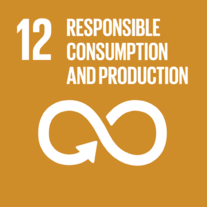 Sustainable Development Goal 12: Responsible consumption and production